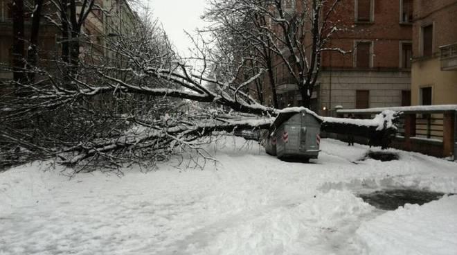 Nevicata febbraio