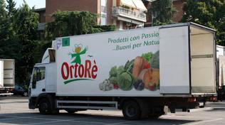 Coop Ortolani