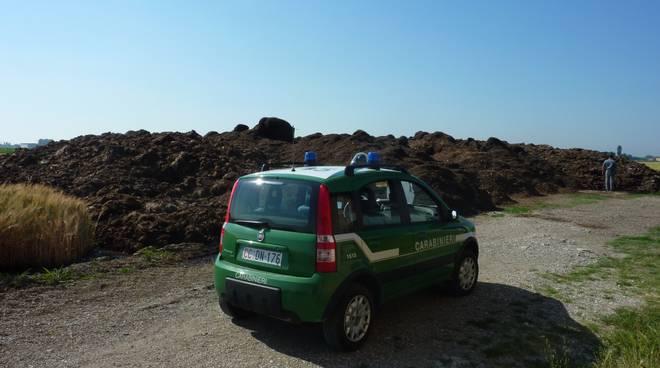 I cumuli di rifiuti agricoli e dell'edilizia scoperti nel podere