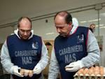 I carabinieri del Nas al lavoro